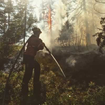 Firefighter putting out a forest fire