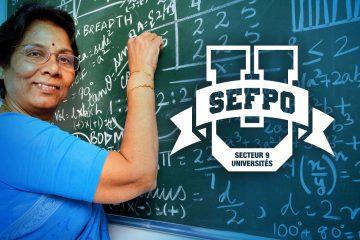 Secteur 9 des universités du SEFPO s, Secteur 9