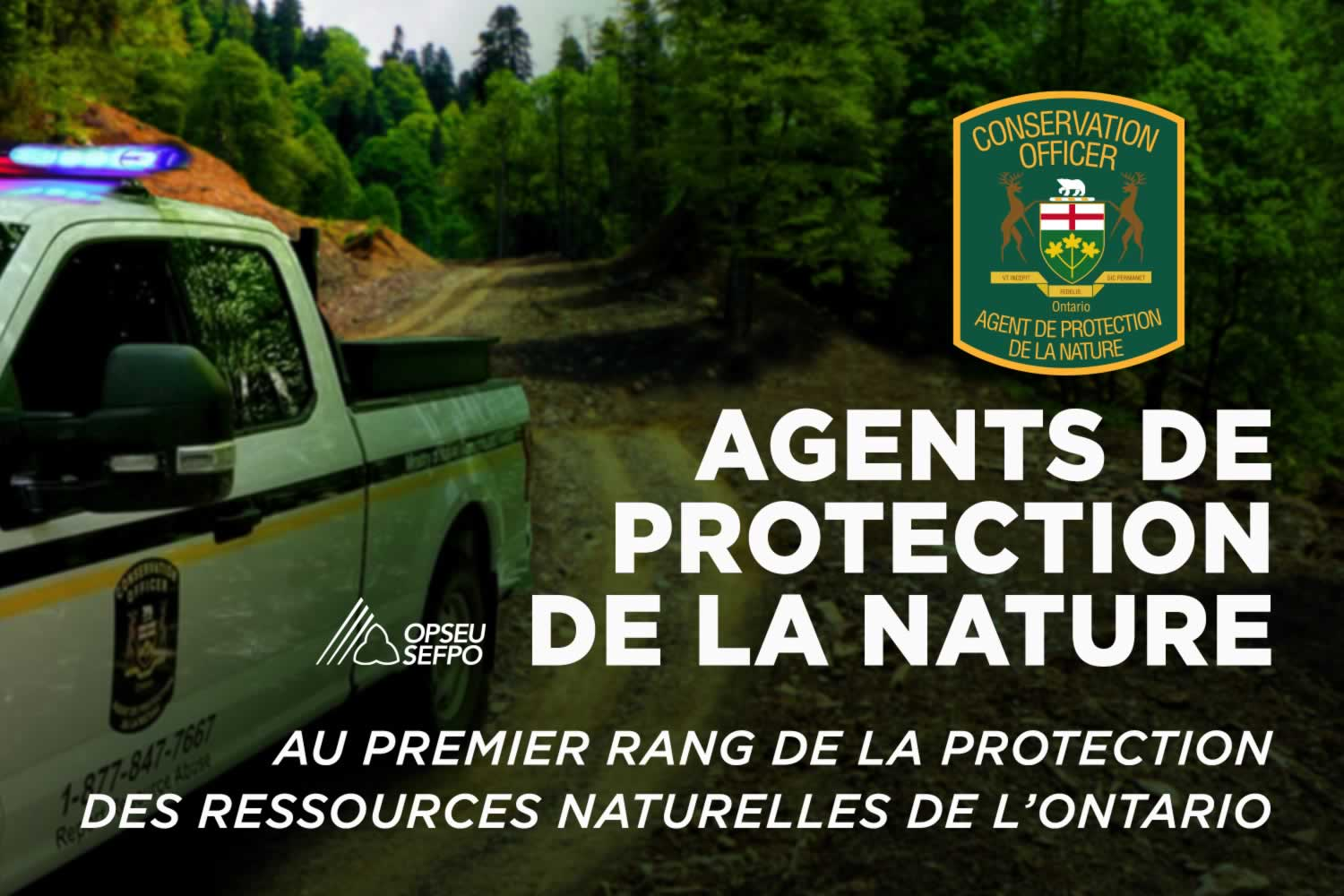 Agents de protection de la nature : Au premier rang de la protection des ressources naturelles de l'Ontario