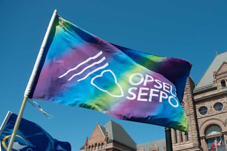 OPSEU/SEFPO flag