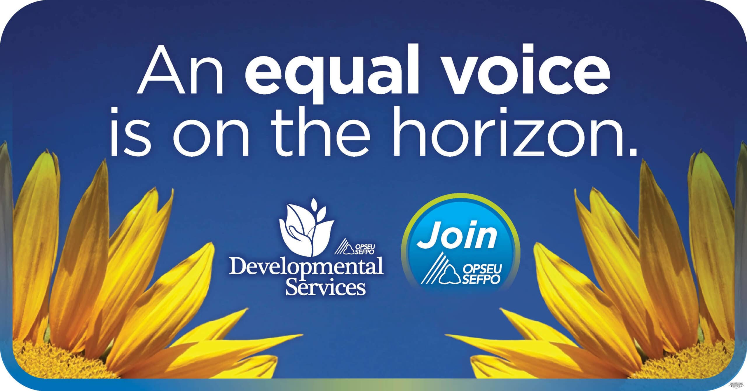 Developmental Services: An equal voice is on the horizon